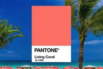Living coral – kolor lata 2019!